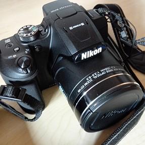 Nikon B700: A Non-Expert Review