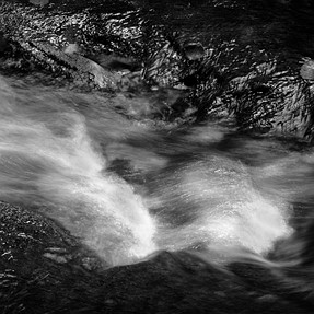 Still Creek Detail.