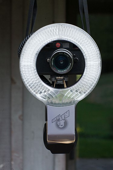 Webcam flashing community 9