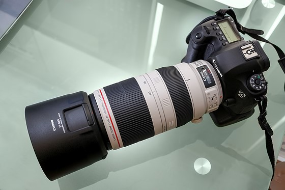 Any comparisons on Canon 100-400 II vs Tamron 150-600mm: Canon SLR