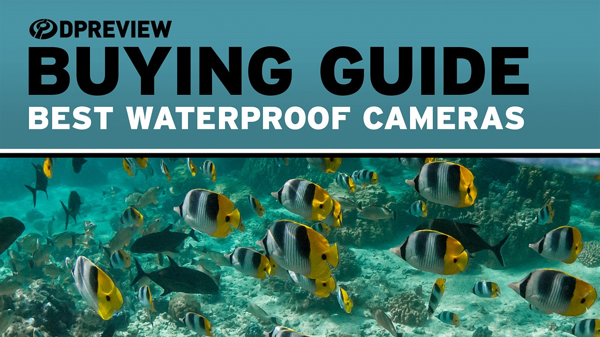 Best waterproof cameras of 2019: Digital Photography Review