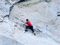 Photos of Alex Honnold's historic El Capitan free-climb will turn your stomach