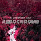 Video: The 'surprising' origin story of Kodak Aerochrome film