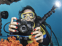 Fantasea FRX100 V underwater housing released for Sony RX cameras