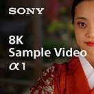 Here is what 8K footage and 50MP stills from the Sony Alpha 1 look like