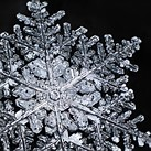 Winter Wonderland: Don Komarechka's snowflakes
