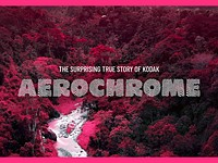Video: The 'surprising' origin story of Kodak Aerochrome film