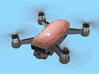 Pigs don't fly, but bears do with DJI's latest Spark drone