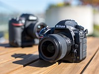 Not quite as good? Nikon D850 versus Nikon D5 subject tracking