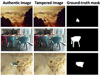 Adobe AI spots tampered images by focusing on noise and artifacts