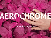 Emulate Kodak Aerochrome in Lightroom with RNI's new preset pack