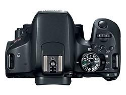 Buyer's Guide: Canon EOS Rebel T7i (800D) vs EOS 77D vs EOS 80D 2