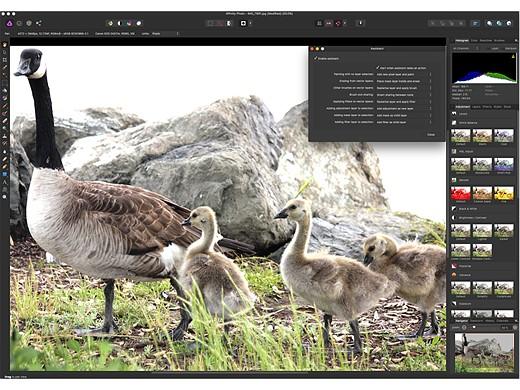 11 Photoshop alternatives for photographers at every level 3