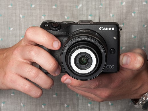Getting up close: Canon EF-M 28mm macro hands-on review 4