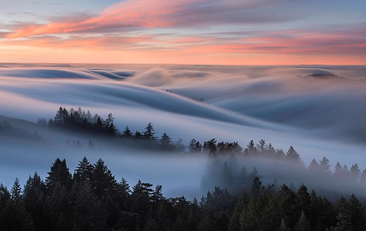 Fog waves: photographer Nick Steinberg captures nature in motion 4