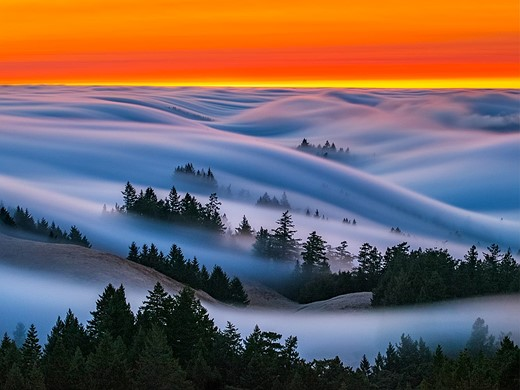 Fog waves: photographer Nick Steinberg captures nature in motion 5