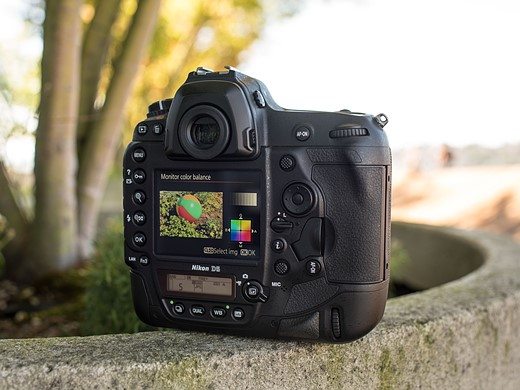 Flagships compared: Canon EOS-1D X Mark II versus Nikon D5 6