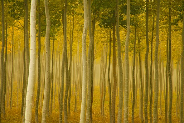 Interview: Landscape photography master Charlie Waite 5