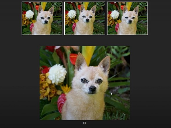 Sneak peek: Adobe's new AI tech animates motion between multiple frames