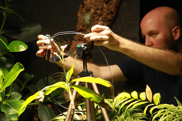 London researchers develop plant-powered camera system for conservation efforts