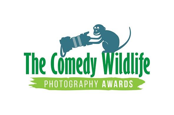 Image result for 2019 wildlife comedy award logo