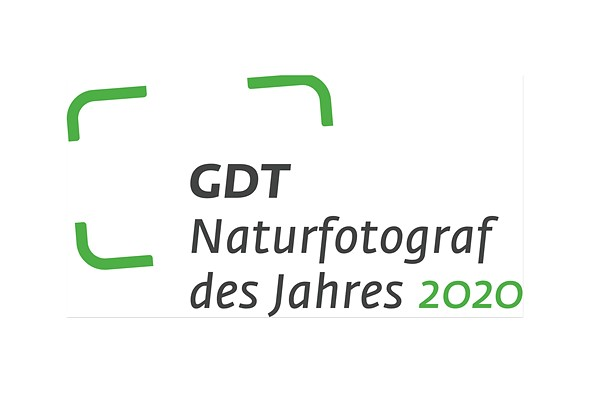 GDT Nature Photographer of the Year 2020 winners