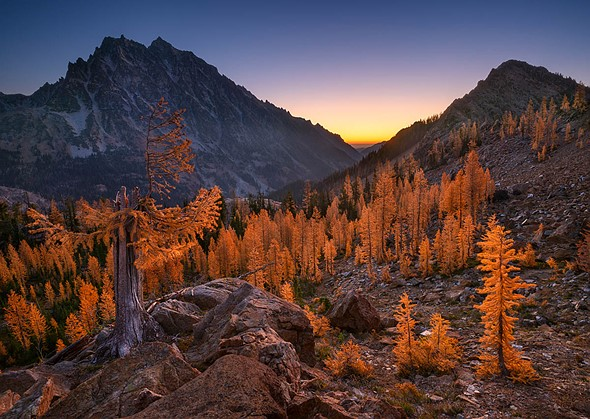 IGPOTY 1st Place, Breathing Spaces: 'Larch Basin Dawn' by <a href=