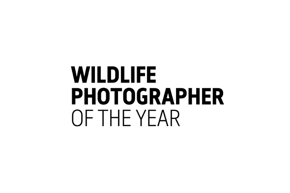 Wildlife Photographer of the Year LUMIX People's Choice Award finalists