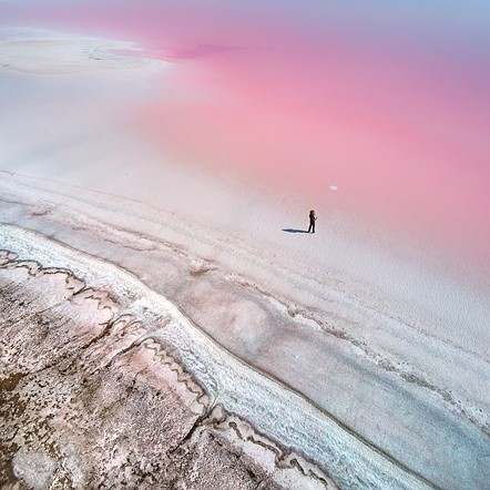 "Professional competition, Natural World &amp; Wildlife, Shortlist, 2020: 'At the Pink planet' by <a href=""http://en.g-photography.net/photographer/overseas/photographer_qliebin.html"" rel=""noopener"" target=""_blank"">Yevhen Samuchenko</a> (Ukraine)"