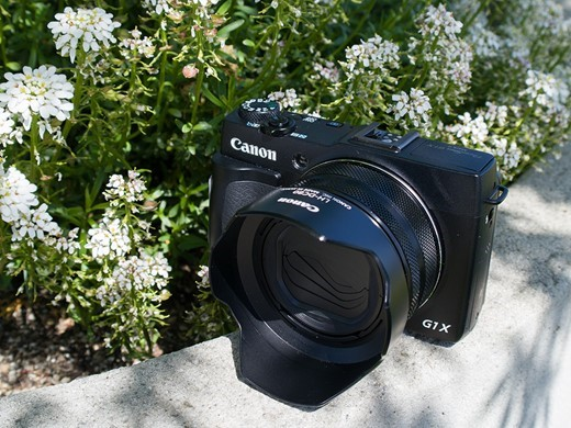 A Traveler's Review of the Canon PowerShot G1 X Mark II