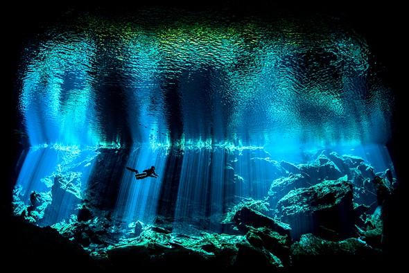 2017British Underwater Photographer of the Year