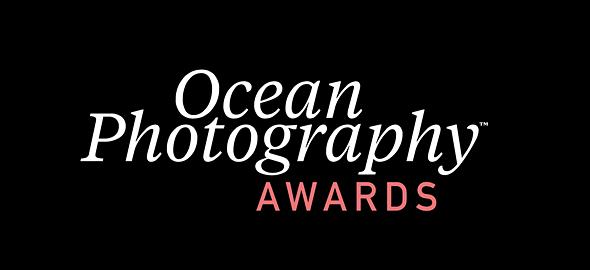 Ocean Photography Awards 2021 finalists