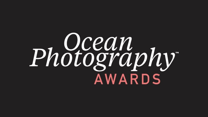 Slideshow: Winners and finalists of the 2020 Ocean Photographer of the Year awards