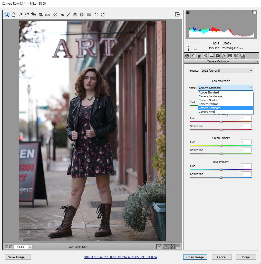 Making your nikon images pop nikon fx slr df d1 d5 d600 d850 view original size baditri Gallery