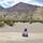 Mojave Gal
