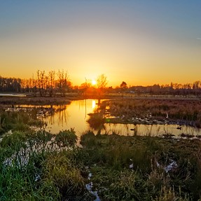 G9 - Sunsets