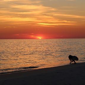 Seaside sunsets