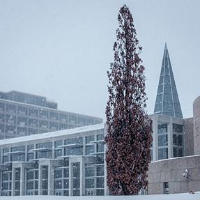 Fuji X30 Captures Ottawa's Snowy February