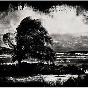 Landscape Noir style