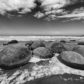 Turtle Backs