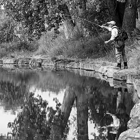 Fly Fisherman on Lake