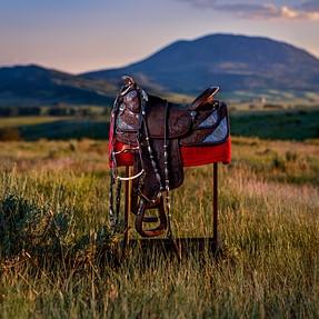 Fashion-style saddle portrait