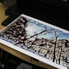 Why's my Canon Pixma Pro-10 printing like this: