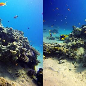 3D underwater cross eyes