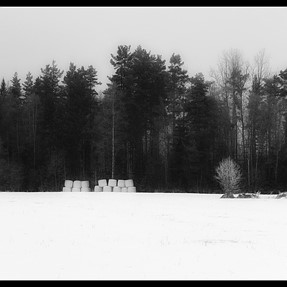 Cristmas day in b/w