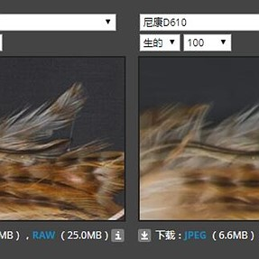 Studio场景比较工具中D610的RAW格式有严重的问题