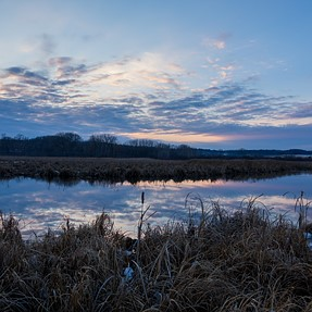 Birds at sundown - RX10 III