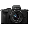 Panasonic Lumix DC-G100 Initial review