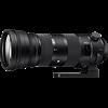 Sigma 150-600mm F5-6.3 DG OS HSM | S