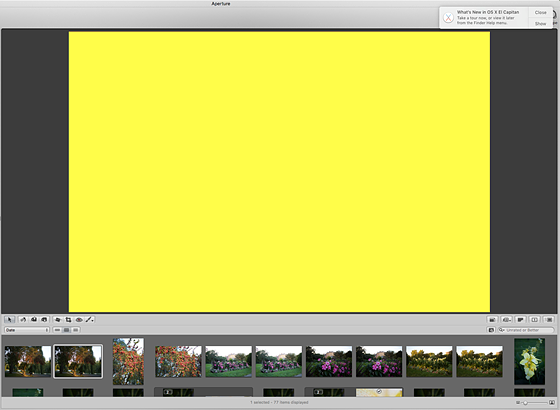 Review of Aperture 3, Apple's Image Organizer and Editor